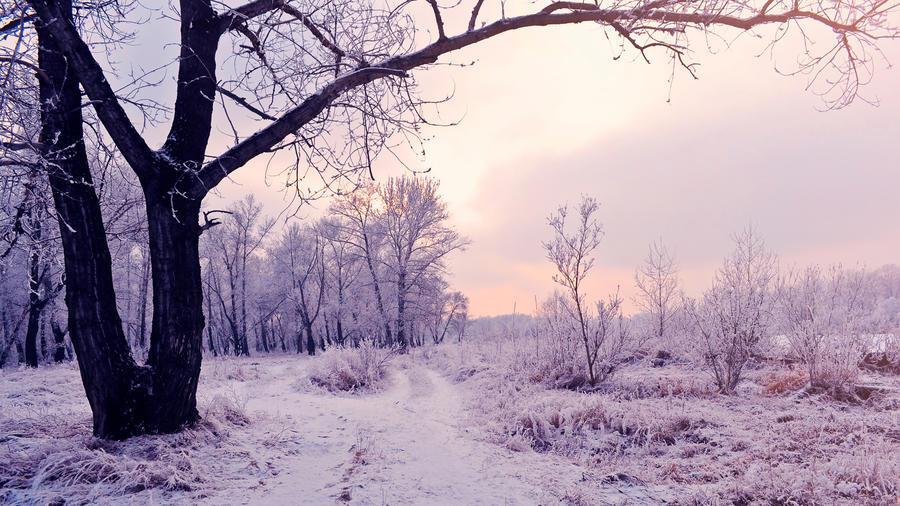 Обои - сказочная Зима - часть 2 Природа, Арт, Зима, Восход, Закат, Лес, Парк, Ночь 408615938