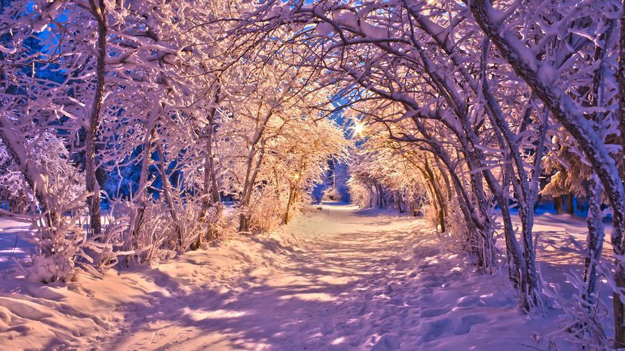 Обои - сказочная Зима - часть 2 Природа, Арт, Зима, Восход, Закат, Лес, Парк, Ночь 1866580521