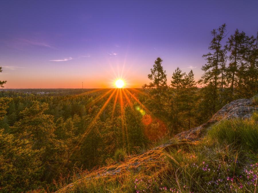 Шпалери загадкових лісів Природа, Ліс, Захід сонця, Схід Сонця id1628668322