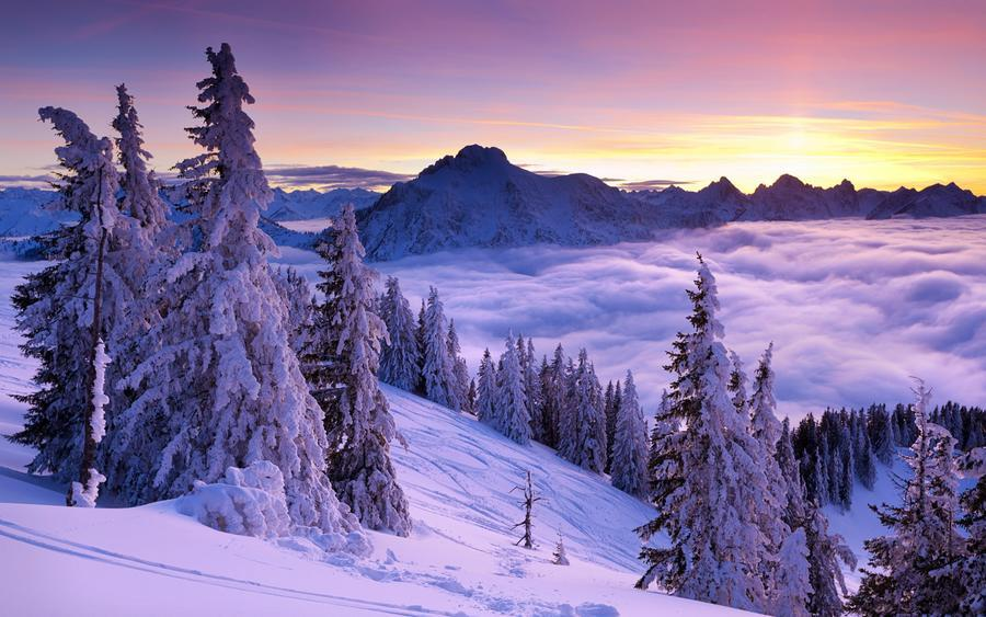 Шпалери чарівних Зимових лісів Природа, Ліс, Зима, Захід сонця, Схід Сонця 1348410036