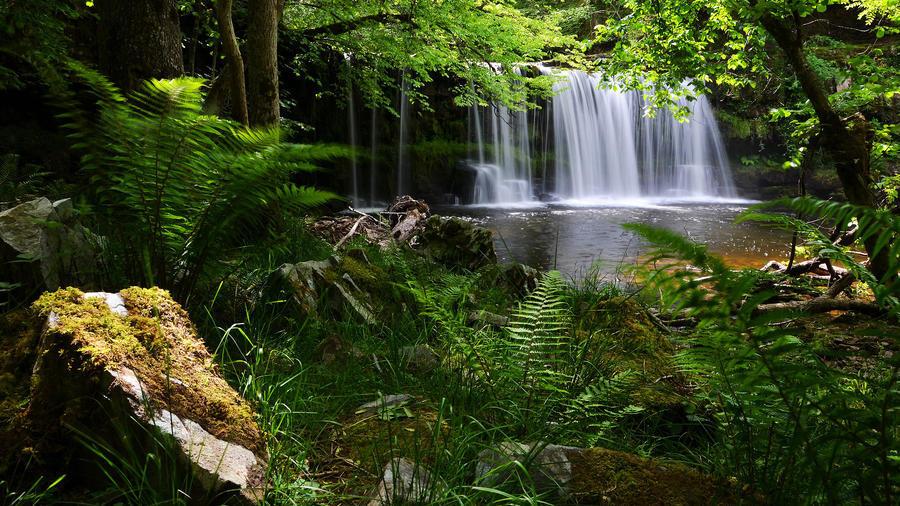 Шпалери казкових водоспадів Природа, Ліс, Водоспади, Захід сонця, Схід Сонця, Джунглі 1580768597