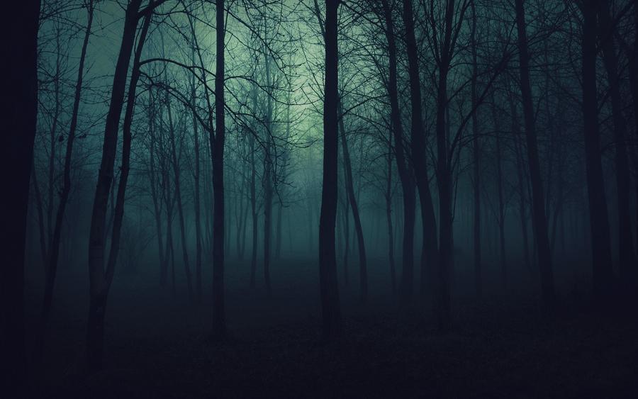 Шпалери - Загадкові Ліси Природа, Арт, Ліс, Ніч, Осінь, Весна, Літо id1950283854
