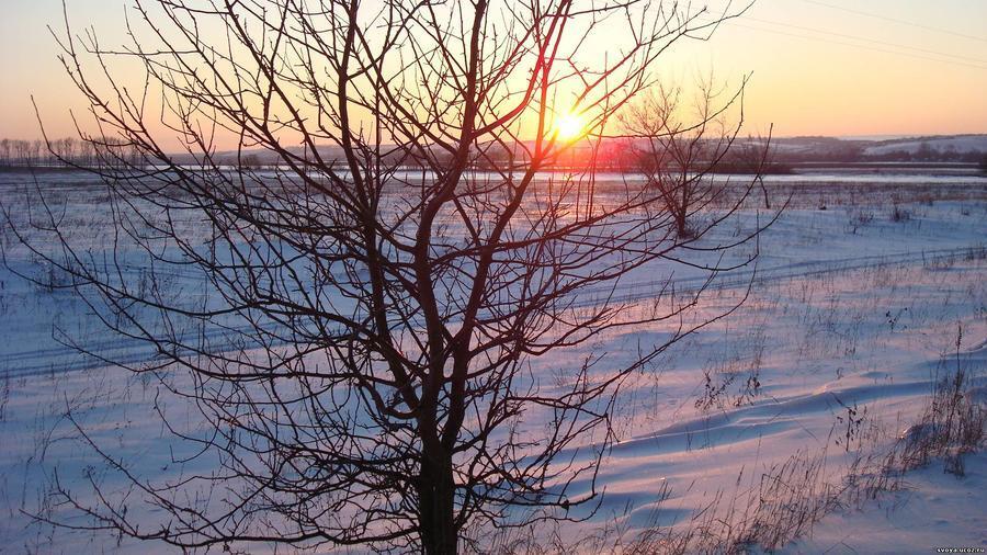 Шпалери чарівних Зимових лісів Природа, Ліс, Зима, Захід сонця, Схід Сонця 503888142