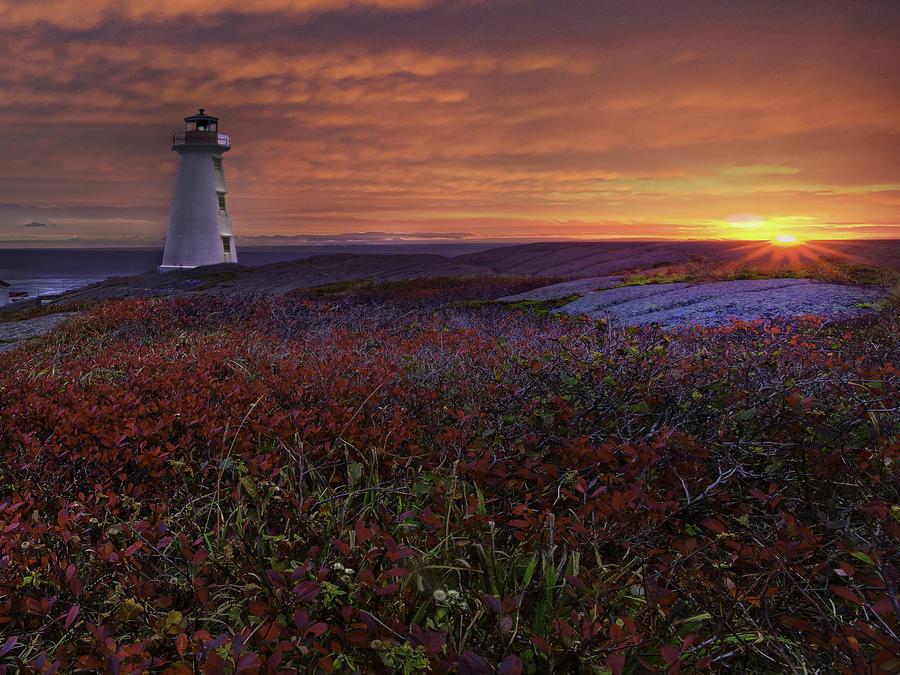 Фотообои - великолепные Моря Природа, Море, Восход, Закат, Берег Моря id234528050