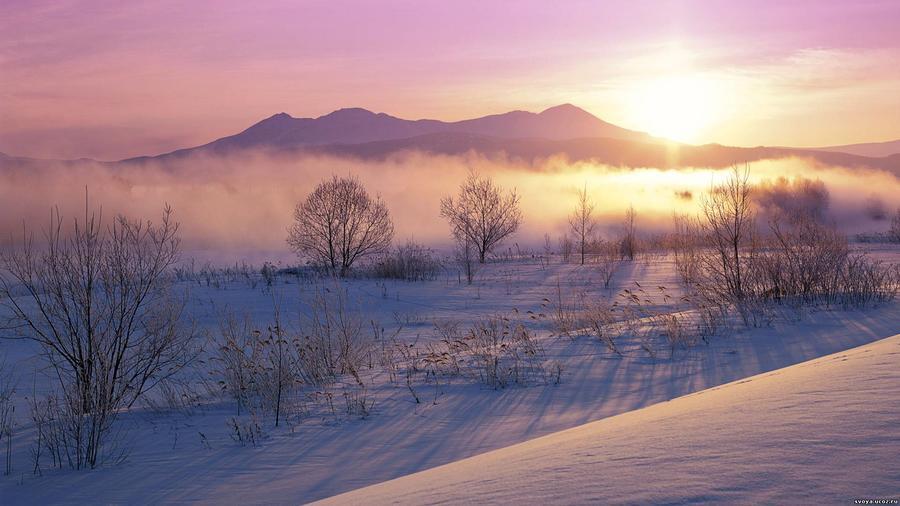 Шпалери загадкових Зимових лісів Природа, Ліс, Зима id1335369915