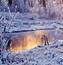 Обои на тему - Сказочная зима Природа, Зима, Парк id1407177755