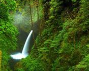Обои сказочных водопадов Природа, Лес, Водопад, Закат, Восход, Джунгли 1679995860