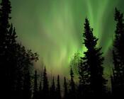 Обои - загадочное Полярное сияние Природа, Лес, Горы, Озера, Полярное сияние id1433725010