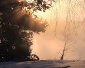 Шпалери - казкова Зима - частина 2 Природа, Арт, Зима, Схід Сонця, Захід сонця, Ліс, Парк, Ніч 654208446