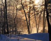 Шпалери - казкова Зима - частина 2 Природа, Арт, Зима, Схід Сонця, Захід сонця, Ліс, Парк, Ніч 516807325