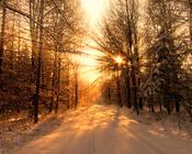 Шпалери - казкова Зима - частина 2 Природа, Арт, Зима, Схід Сонця, Захід сонця, Ліс, Парк, Ніч 1186459751