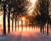 Обои - сказочная Зима - часть 2 Природа, Арт, Зима, Восход, Закат, Лес, Парк, Ночь 1893635604