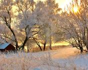 Обои - сказочная Зима - часть 2 Природа, Арт, Зима, Восход, Закат, Лес, Парк, Ночь 804650521