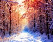 Шпалери на тему - Казкова зима Природа, Зима, Захід сонця, Схід Сонця id1542909532
