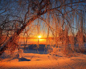 Шпалери на тему - Казкова зима Природа, Зима, Захід сонця, Схід Сонця id993193722