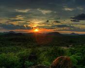 Шпалери загадкових лісів Природа, Ліс, Захід сонця, Схід Сонця id190064909