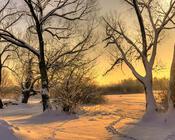 Обои - сказочная Зима - часть 1 Природа, Арт, Зима, Восход, Закат, Лес, Парк, Ночь id1409251202
