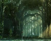 Шпалери - Загадкові Ліси Природа, Арт, Ліс, Ніч, Осінь, Весна, Літо id1257905723