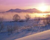 Обои волшебных Зимних лесов Природа, Лес, Зима, Закат, Восход id1486499979