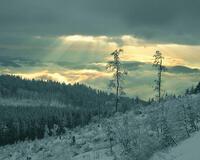 Шпалери загадкових Зимових лісів Природа, Ліс, Зима id136657820